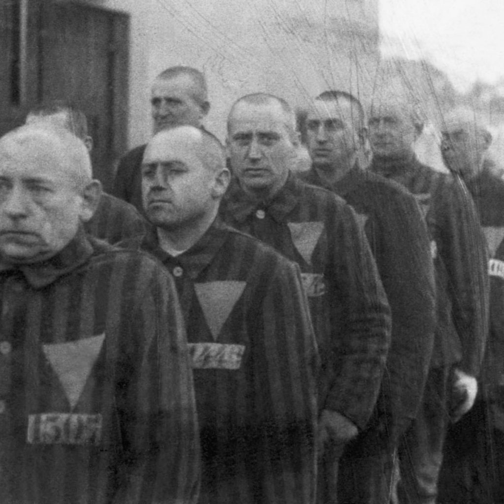 pink-triangle-holocaust